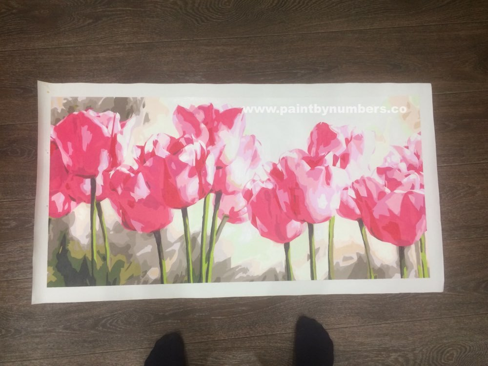 Pink tulips (50cm x 100cm)3