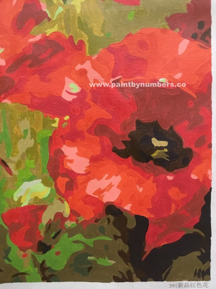 Poppies close up4