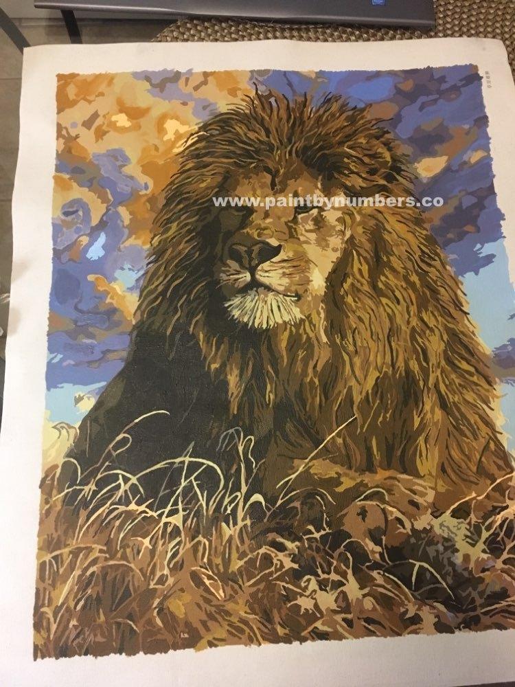 Proud Lion4