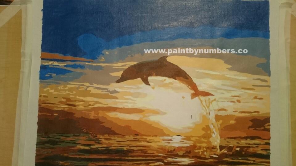 Sunset Dolphin5