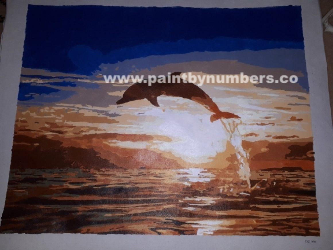 Sunset Dolphin7