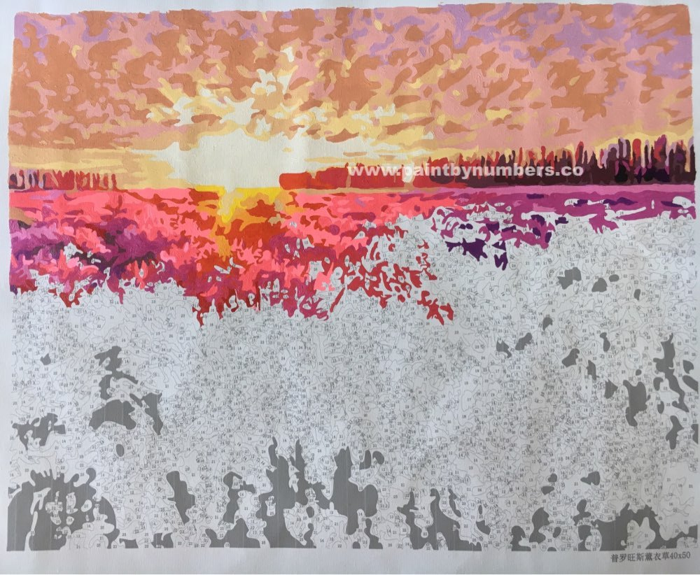 Sunset on a lavender field