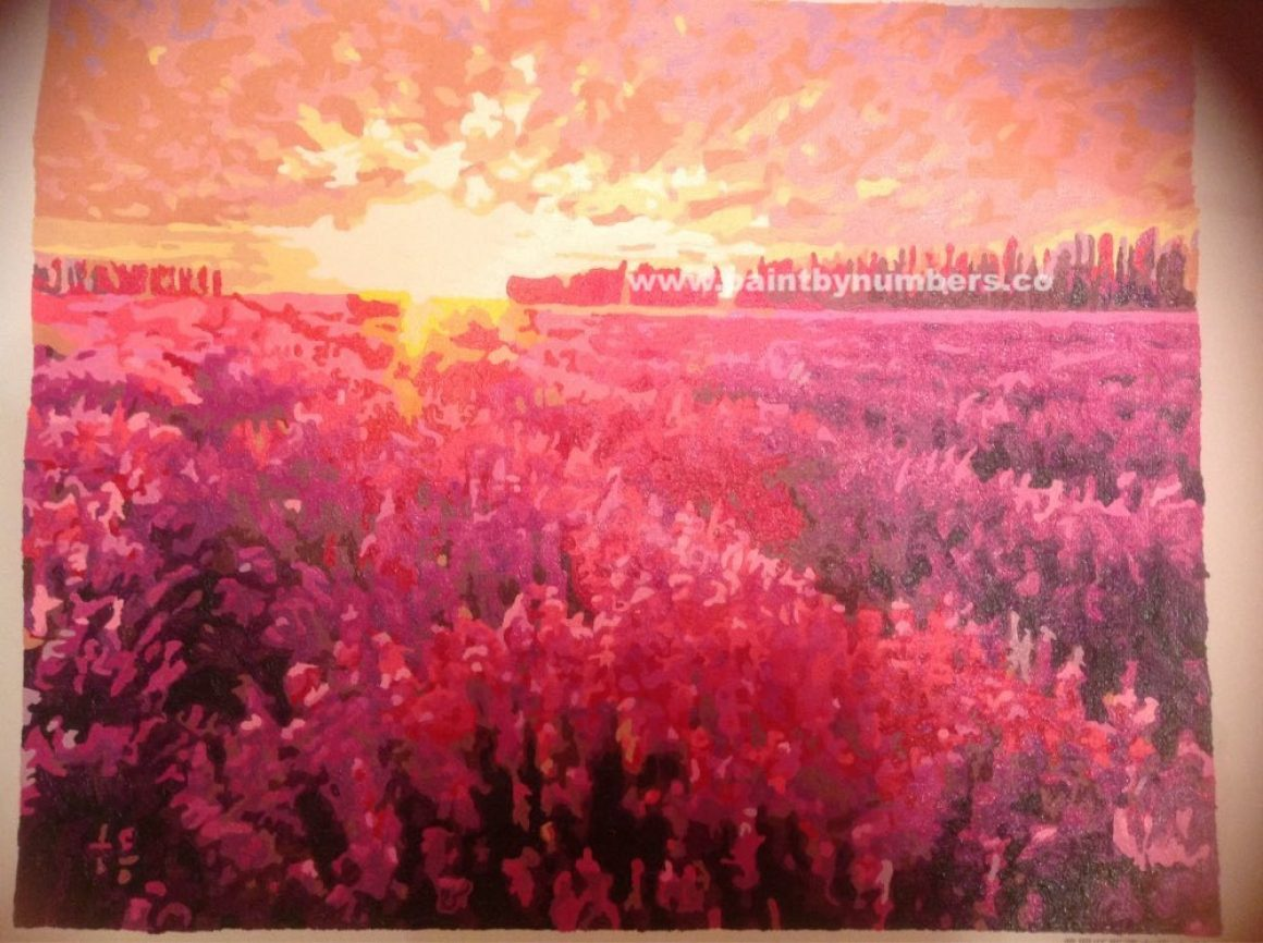 Sunset on a lavender field2