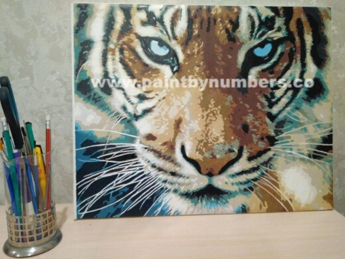 Tiger closeup1