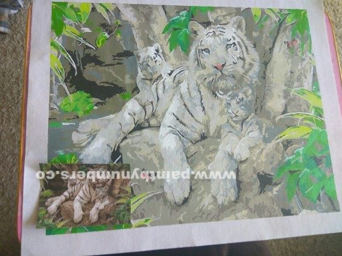 Tiger resting with cubs2