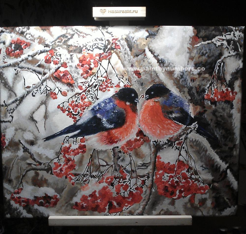 Two blue and red birds sitting on a tree0001