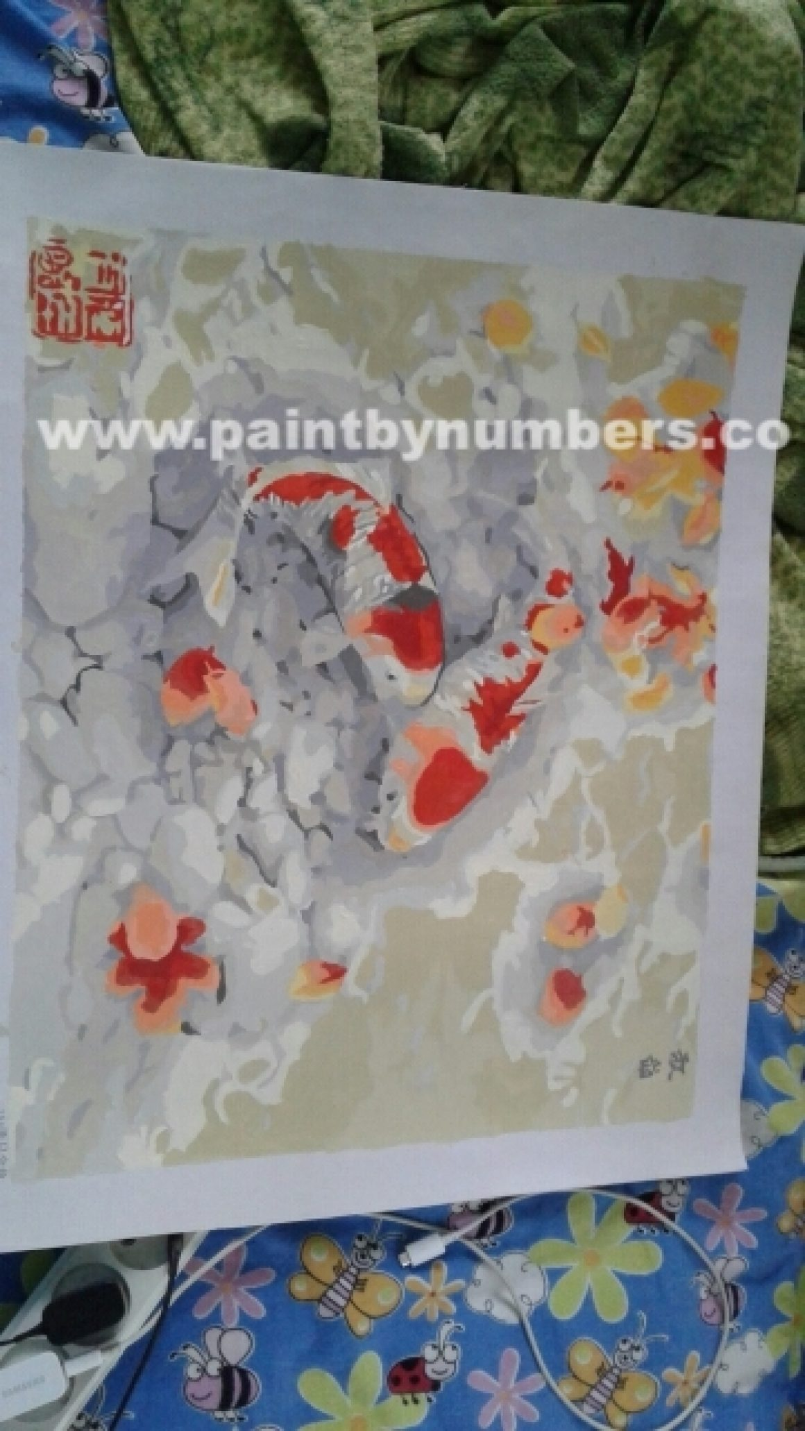 Two koi fish in a rock pond01