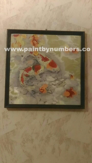 Two koi fish in a rock pond02