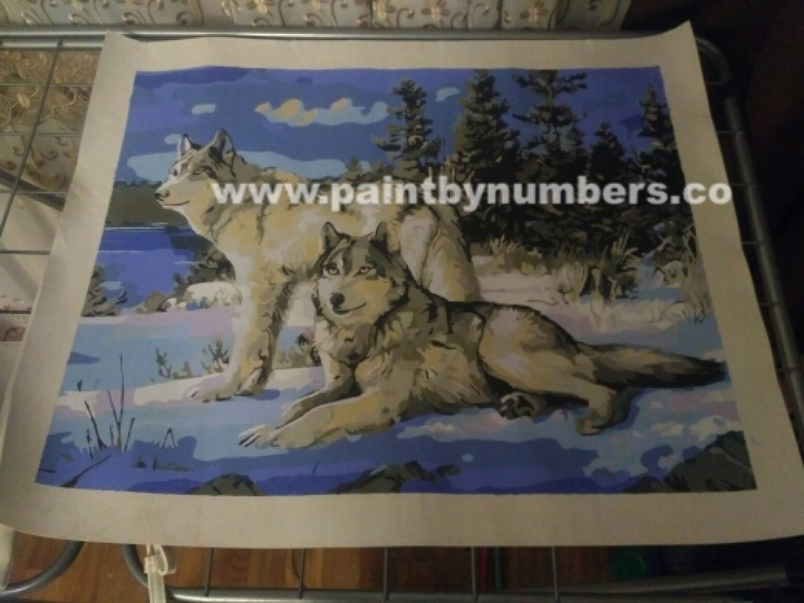 Two white wolves in the snow 2