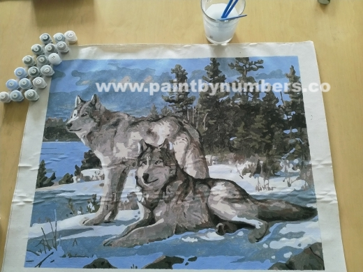 Two white wolves in the snow 3