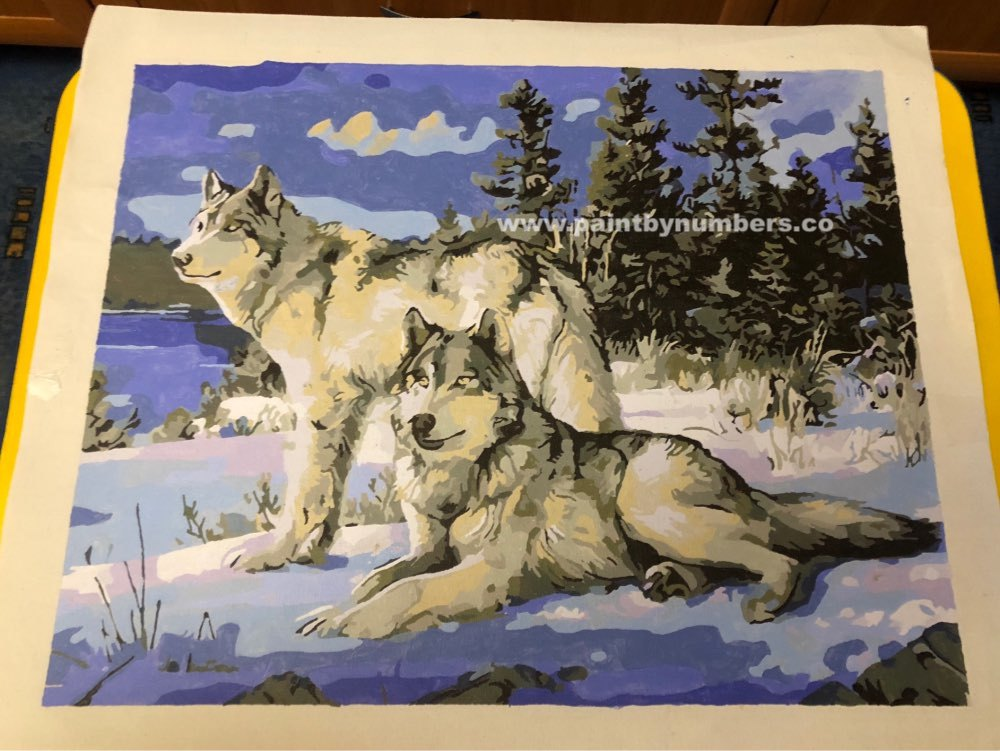 Two white wolves in the snow 44