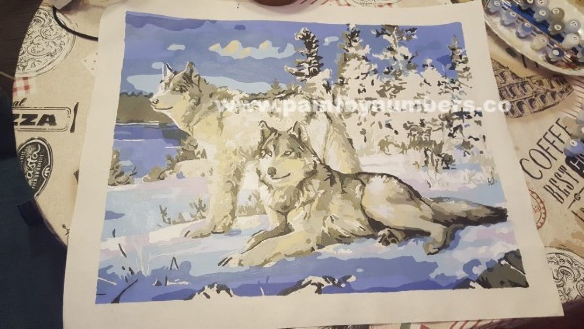 Two white wolves in the snow 6