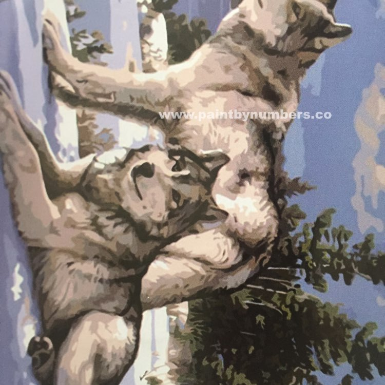 Two white wolves in the snow4
