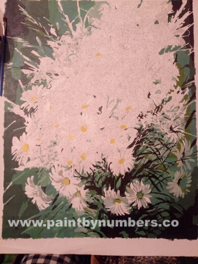 White Daisies Bunch4