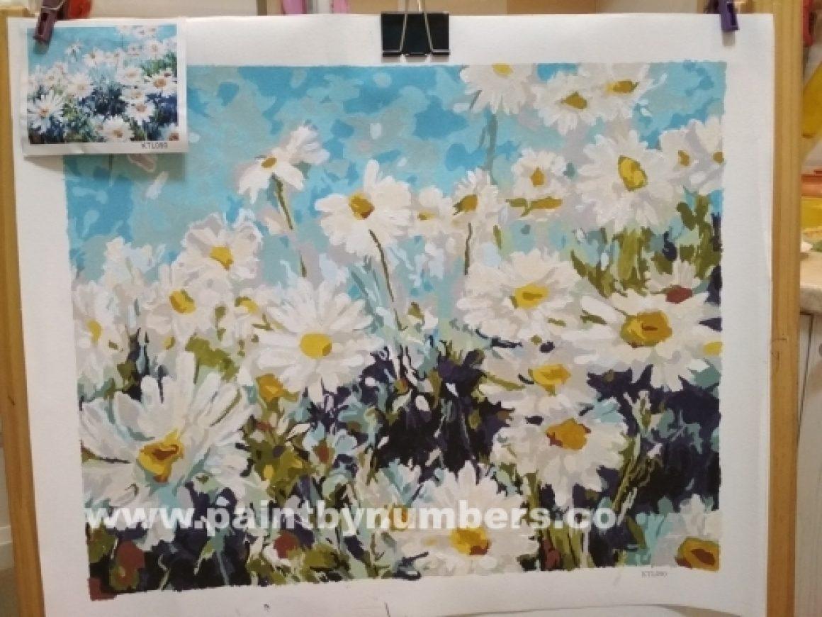 White Daisies3