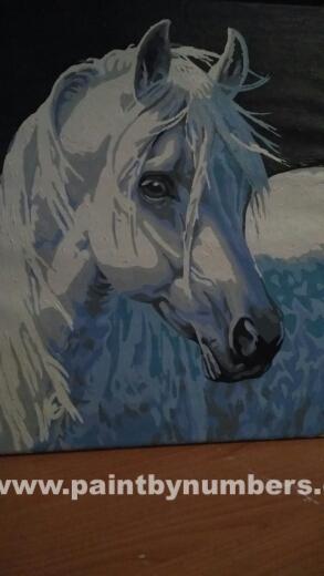 White horse5
