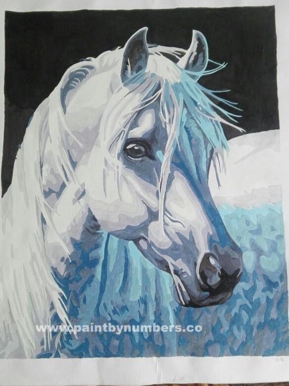 White horse7