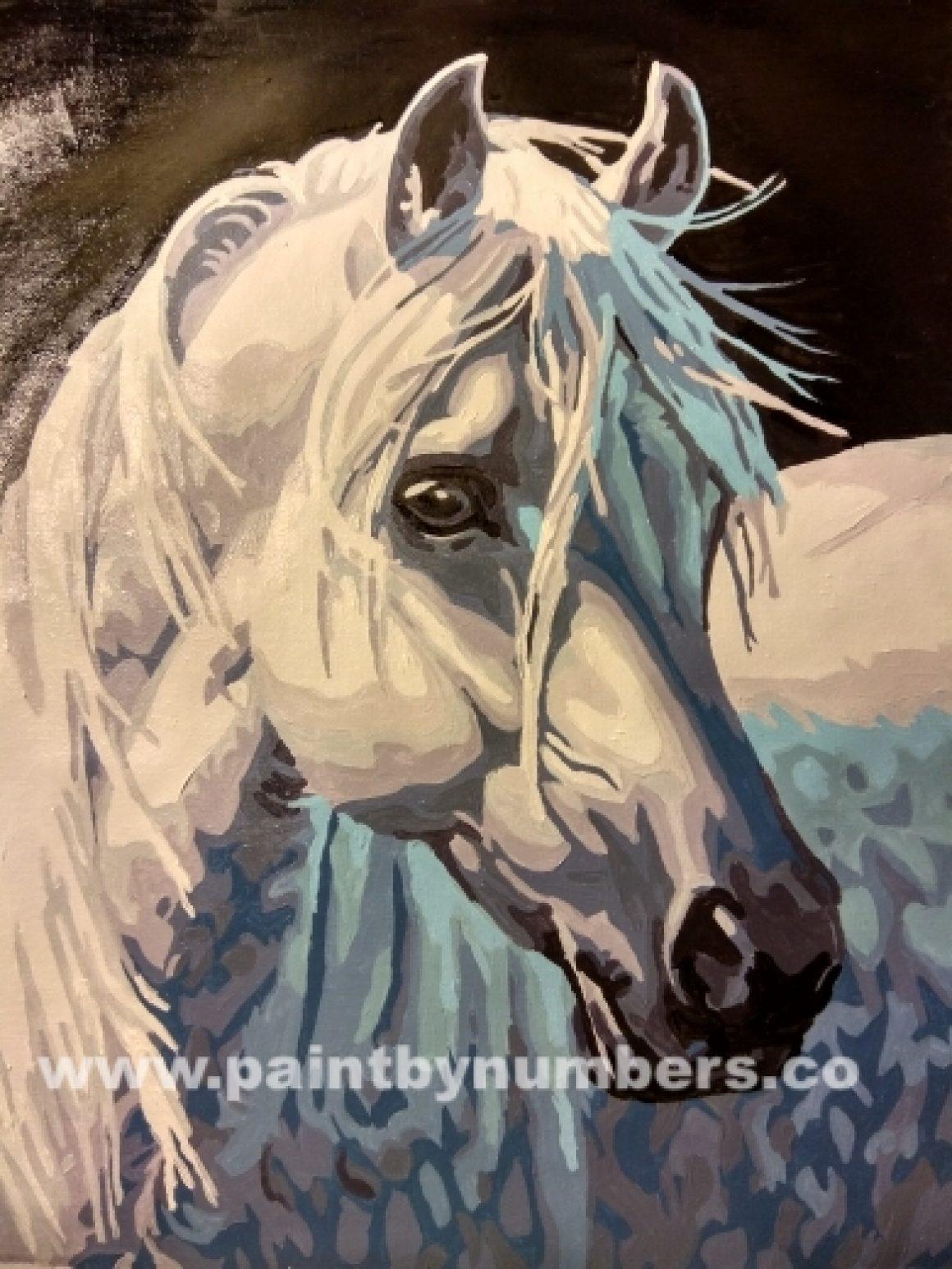White horse8