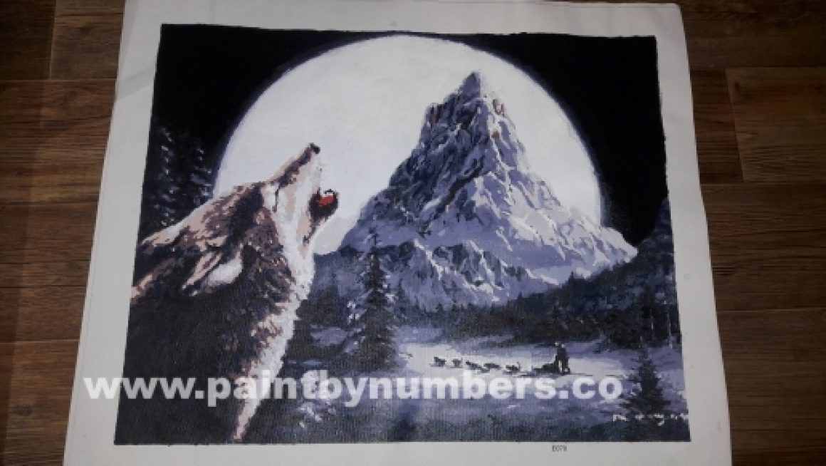 Wolf howling at the moon03