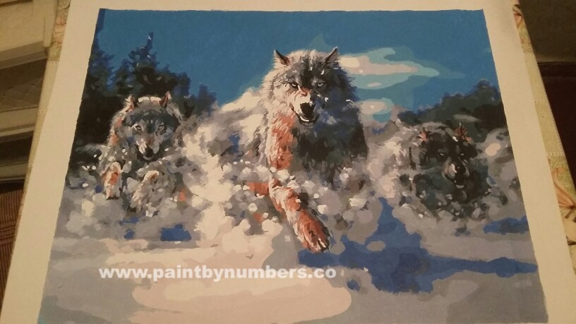 Wolves running in snow04